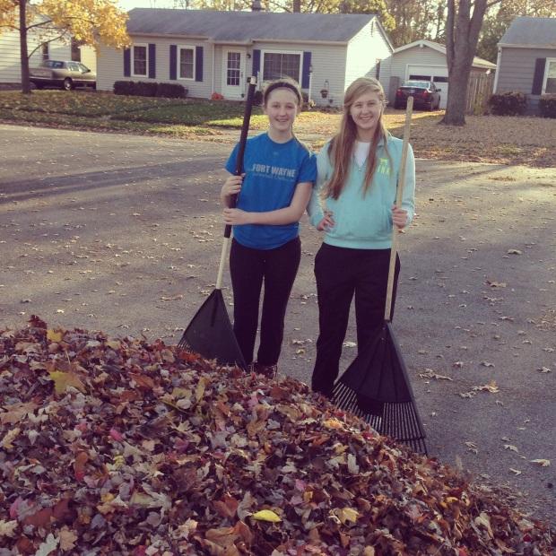 Impact 52 rakes leaves