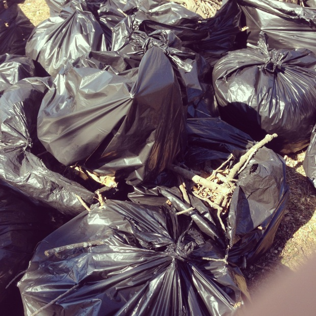 Bags and bags of trash and sticks