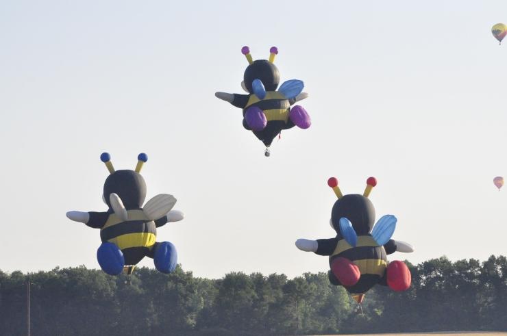 Impact 52 volunteers as hot air balloon chase team